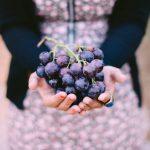Verdades y mitos sobre el vino ecológico